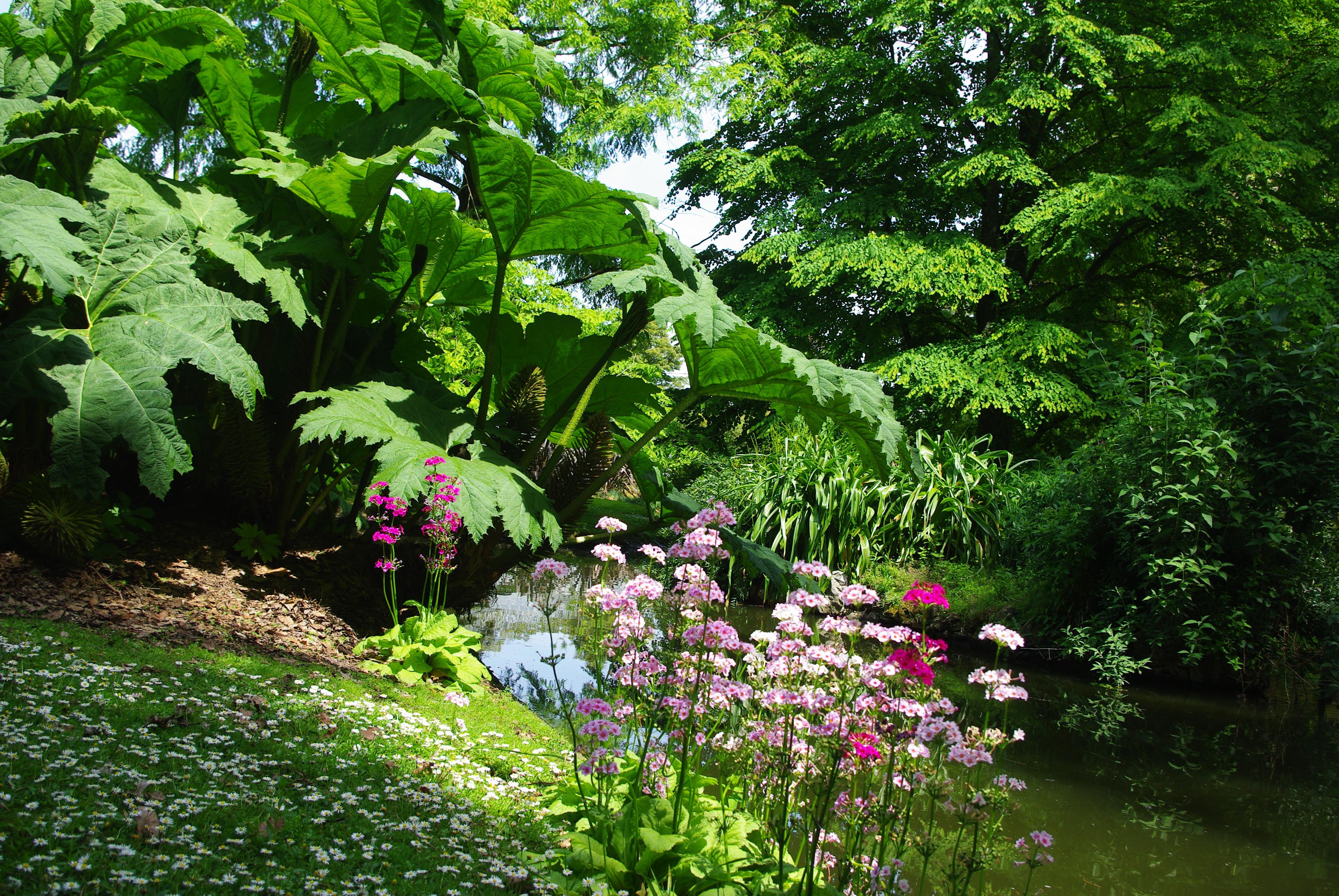 Jardin des Plantes of Nantes - Botanical Gardens ...